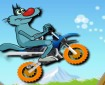 Motorcu Kedi