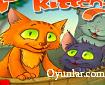 Dalgıç Kedi