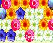 Hedefteki Çiçekler